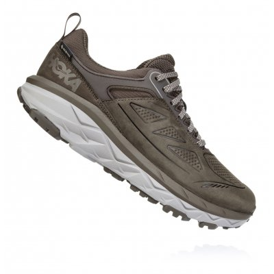 CHALLENGER LOW GTX WOMEN'S